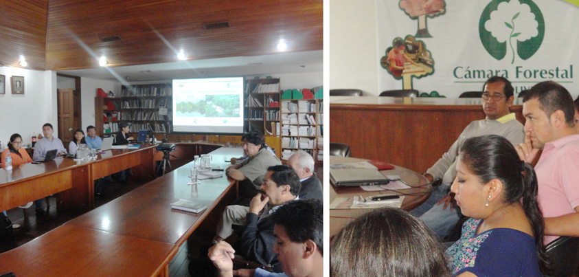 Conclusiones de reunión de trabajo Gobierno - CFB sobre Plan Sectorial de Bosques