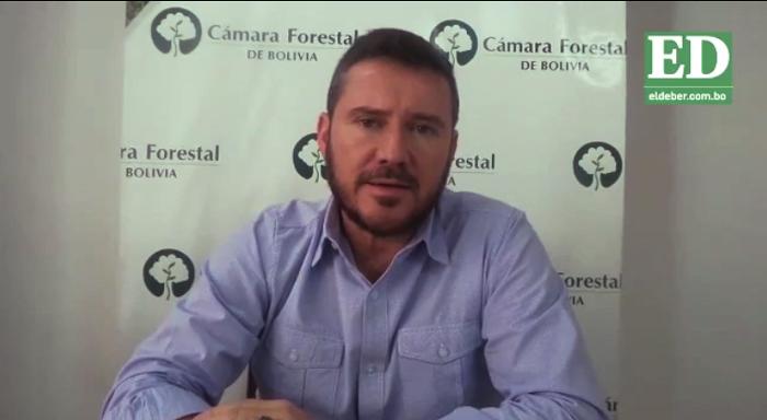 Industria forestal en alerta ante importaciones