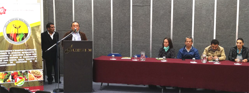 La CFB y el Gobierno en taller sobre el sector forestal de Bolivia