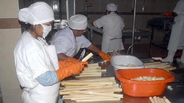 Productores de palmito migran a otros rubros por caída de precios