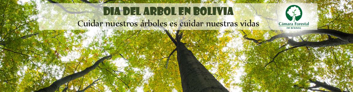 Día del Arbol en Bolivia