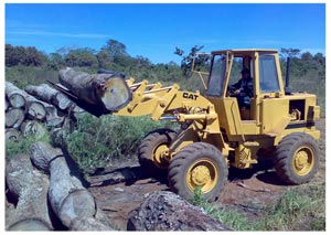 Gobierno y forestales definen plan para sacar a flote al sector