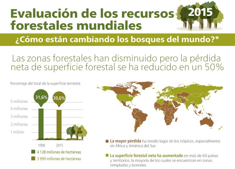 Evaluación de los recursos forestales mundiales 2015 - ¿Cómo están cambiando los bosques del mundo?. Infografia - Parte 1