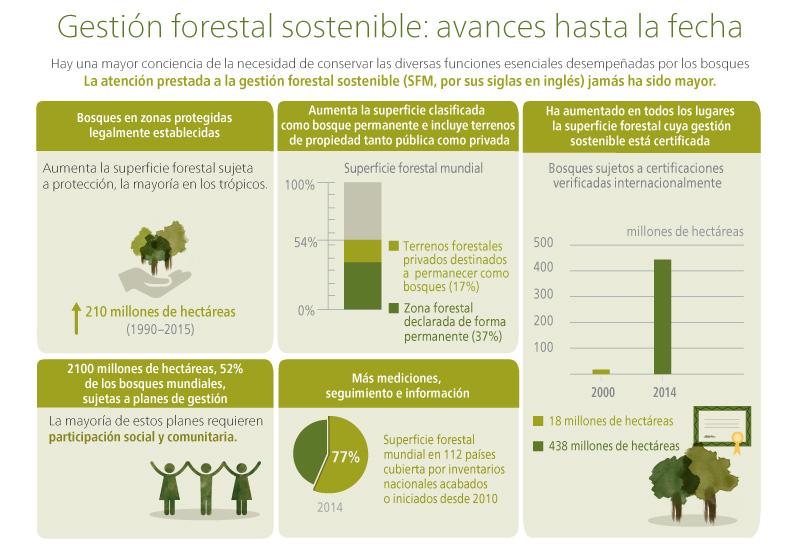 Evaluación de los recursos forestales mundiales 2015 - ¿Cómo están cambiando los bosques del mundo?. Infografia - Parte 3
