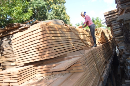 Producción de madera disminuye en el país La ABT indicó que este año la importación de melamínicos se redujo en un 60 por ciento