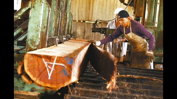 El contrabando y los bajos precios de los países fronterizos provocaron pérdidas al sector maderero. Foto: El Deber