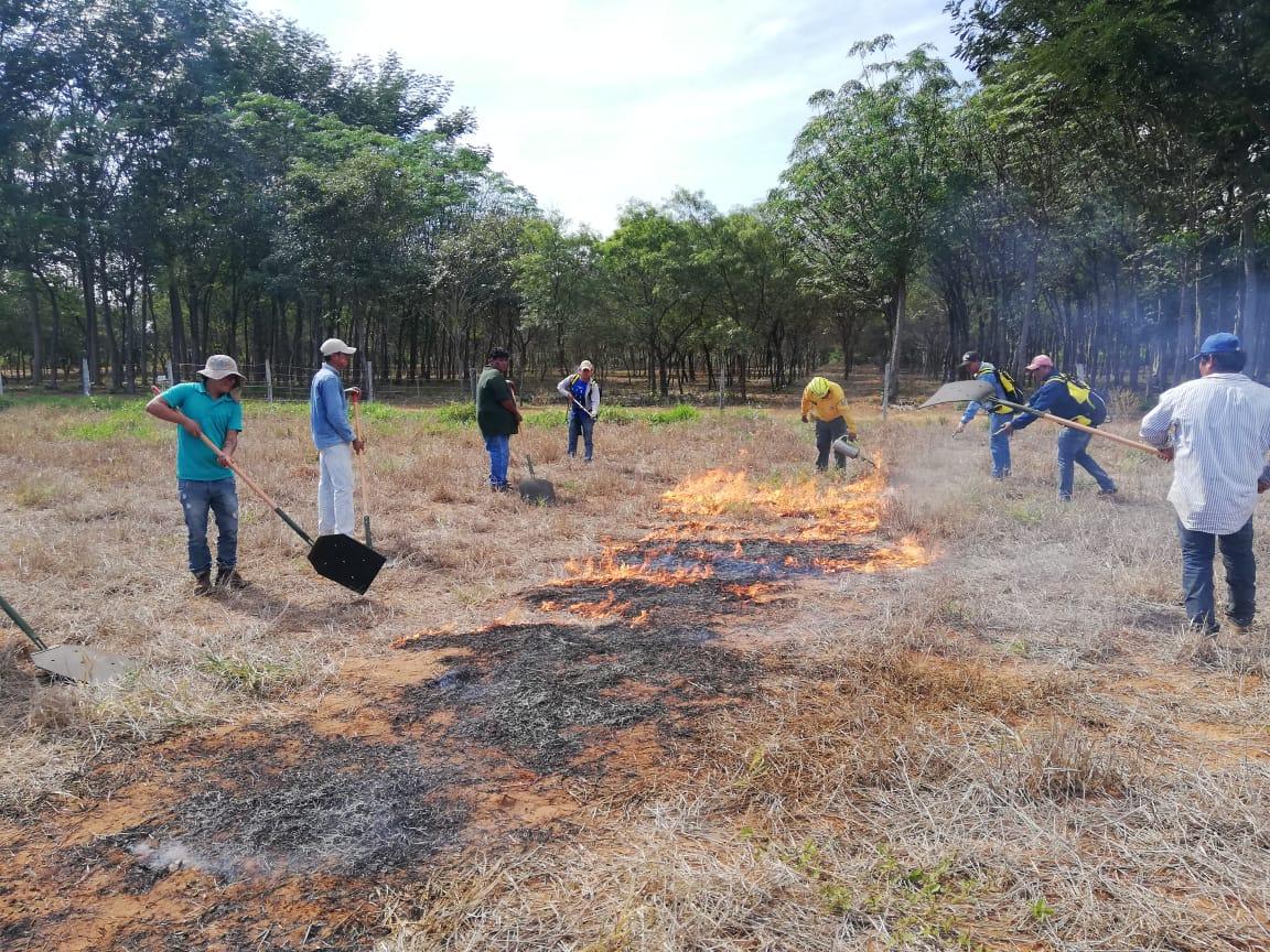 Programa de Mitigación de Incendios Forestales de la Gobernación