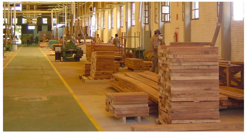 El sector forestal registra balanza comercial positiva