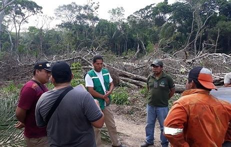 Desalojan asentamiento ilegal en reserva forestal de Guarayos