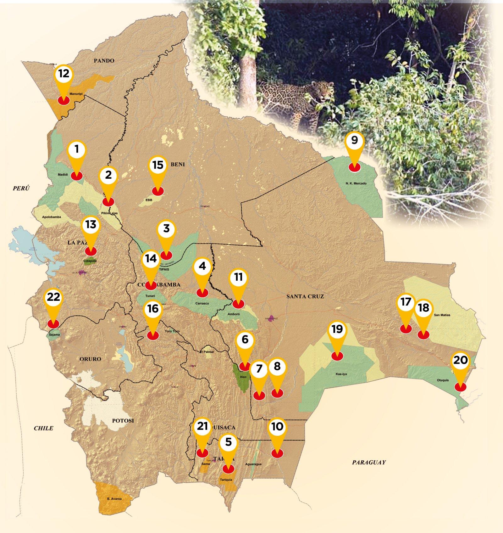 """Desde impacto de megaobras hasta avasallamientos amenazan a las áreas """"protegidas"""" Bolivia cuenta con 22 parques nacionales ricos en biodiversidad y recursos naturales, cuya intangibilidad está en riesgo por diversas causas, advierten biólogos, activistas y la Asamblea de DDHH."""