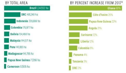 El Instituto de Recursos Mundiales (WRI) informó que 12 millones de hectáreas de selvas tropicales han sido destruidas en el mundo. Bolivia es uno de los países más afectados