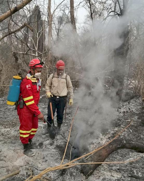 En el Centro de Operaciones de Emergencia Departamental (Coed) informaron que suma un nuevo municipio afectado por incendios forestales este es, Santa Rosa del Sara. En el mes se registró 755 focos de quema y 27 incendios activos en el departamento.