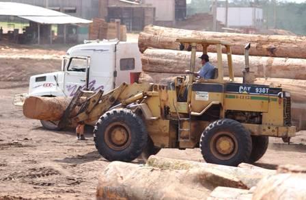 Ref. Fotografia: Crisis. Por varios años el sector forestal no ha podido dinamizarse, el pago del segundo aguinaldo podría asfixiarlos.
