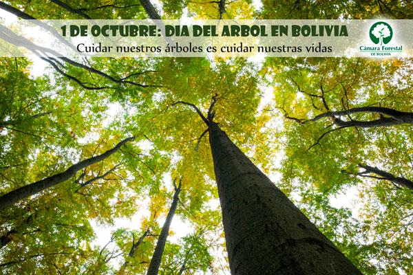 Día del Árbol en Bolivia