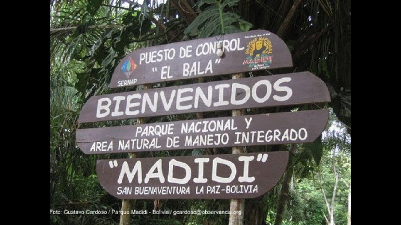 Expedición confirma que la mayor biodiversidad del mundo está en Bolivia. Foto: El Deber